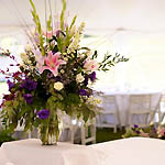 wedding marquees in munster